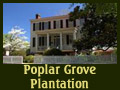 Poplar Grove Plantation Hampstead Wedding Planning